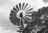 Windmill on Wilson River