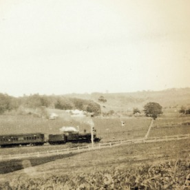 Train at Laureldale ~1930