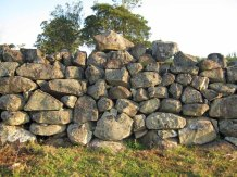 Stone wall, constructed by Indian Tradesman. Booyong
